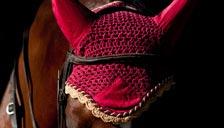 Bonnets cheval
