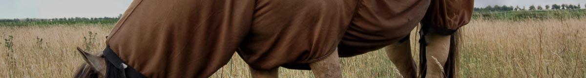 Chemises filet, anti-mouches