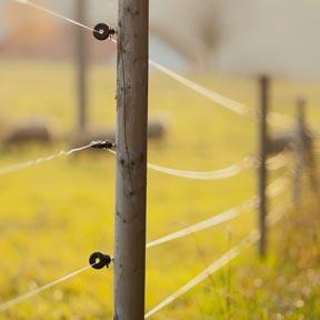 Matériels de clôture électrique