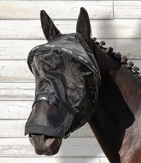 masque anti mouche pour chevaux